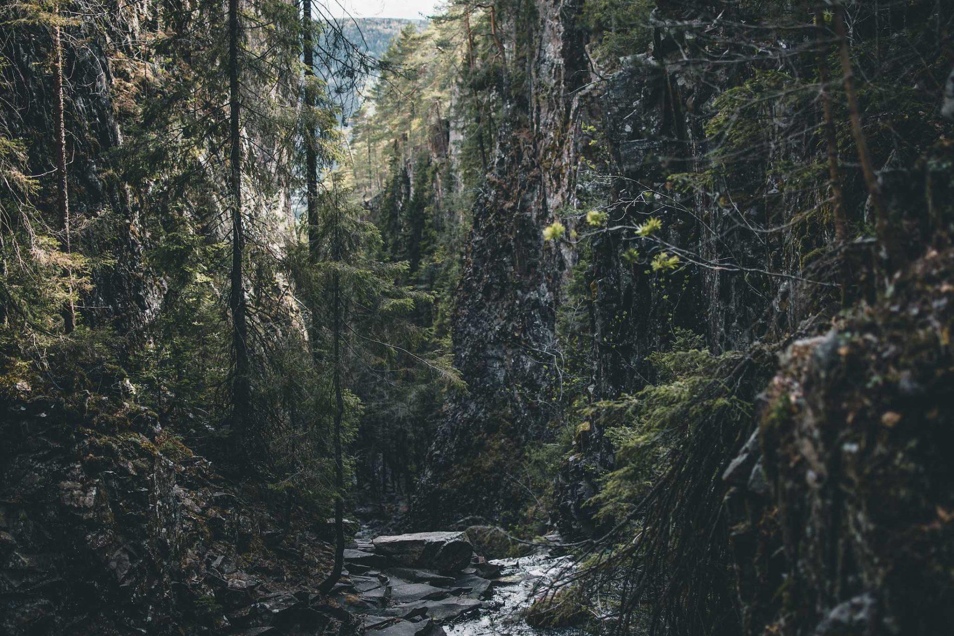 kanion Drammen