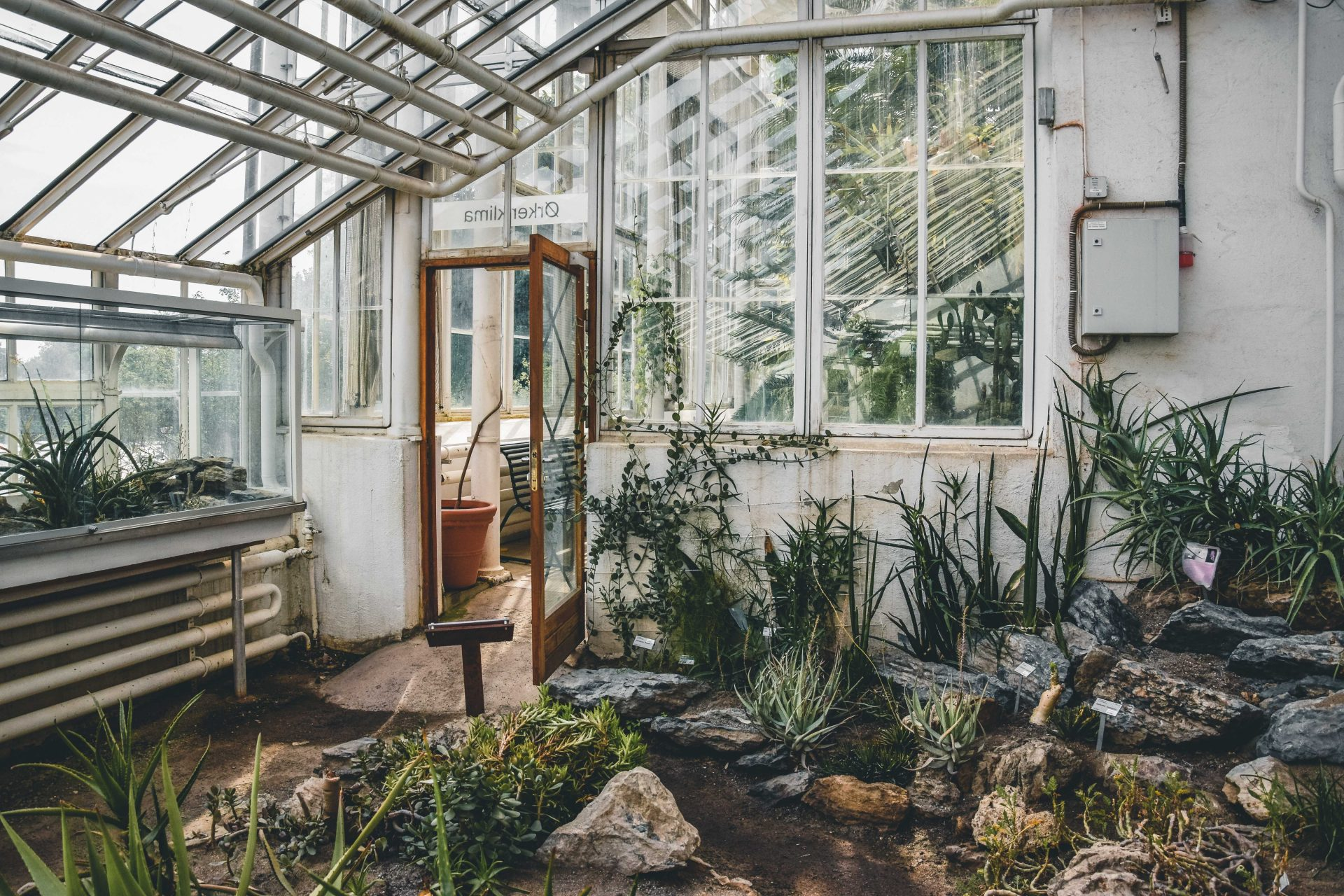 Ogród botaniczny wOslo