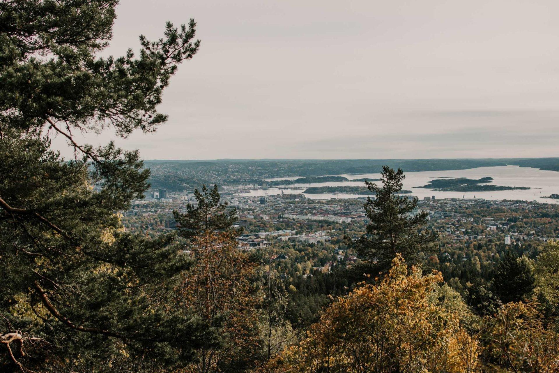 wzgórze Vettakollen