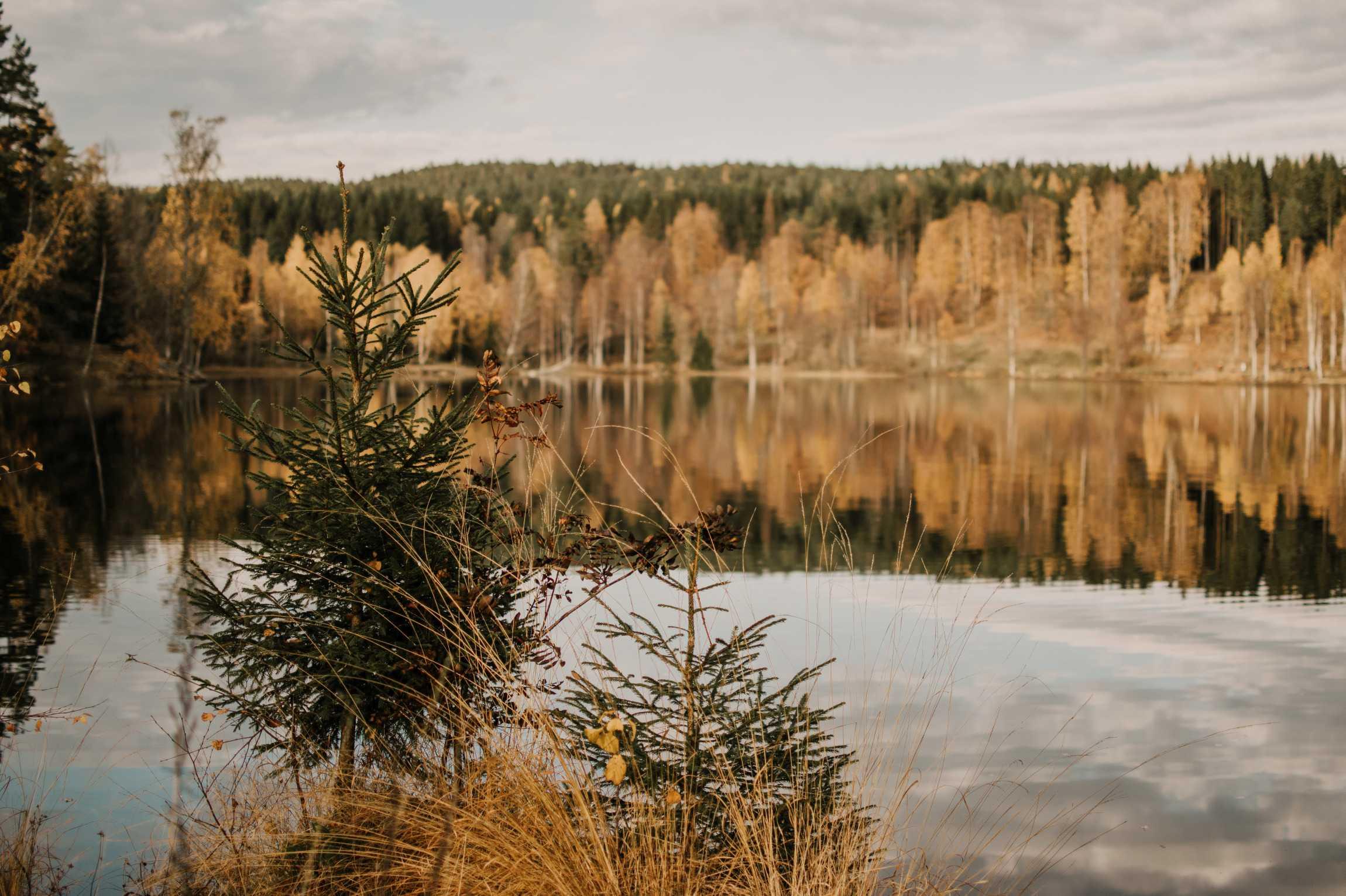 jezioro Sognsvann