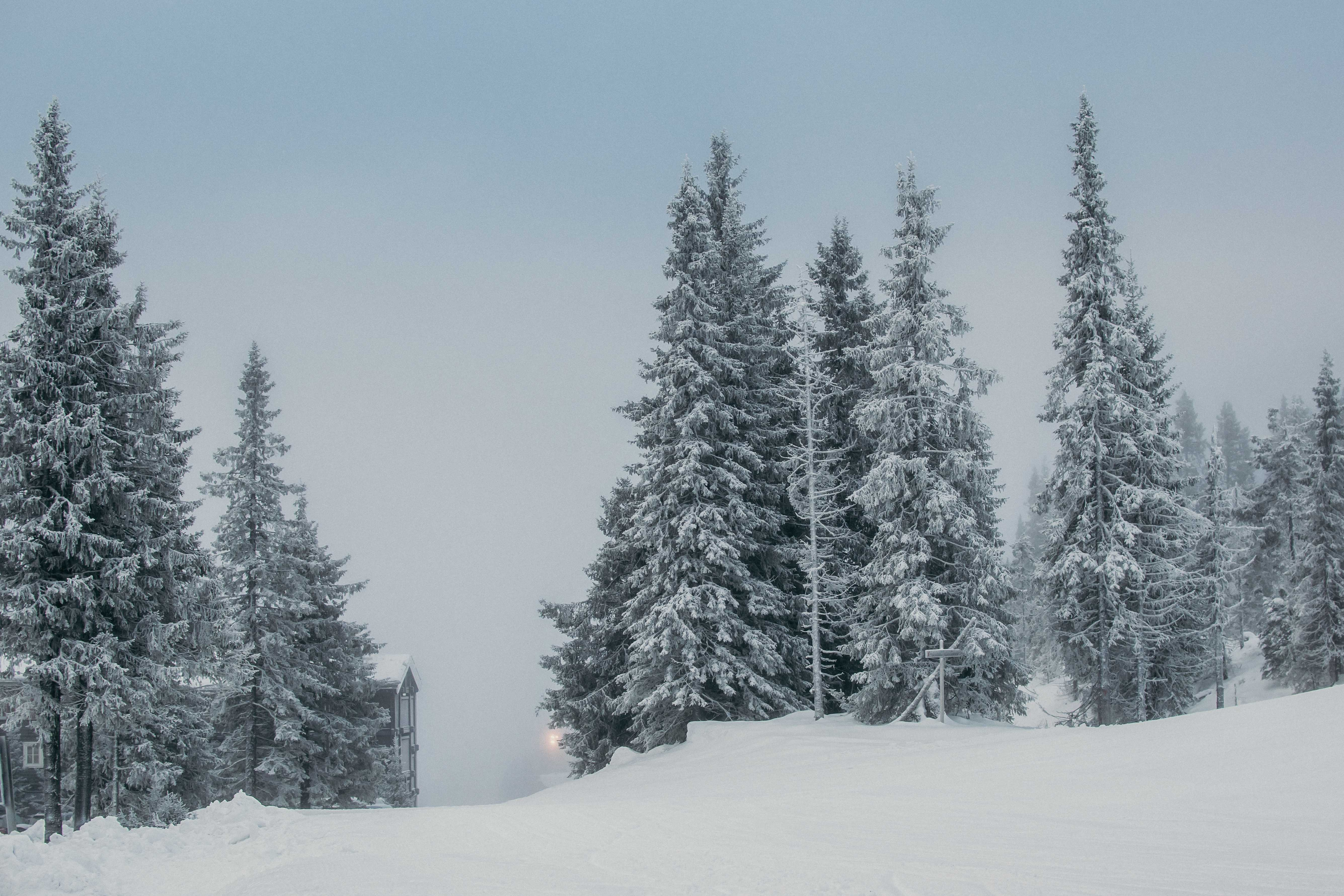 Kvitfjell