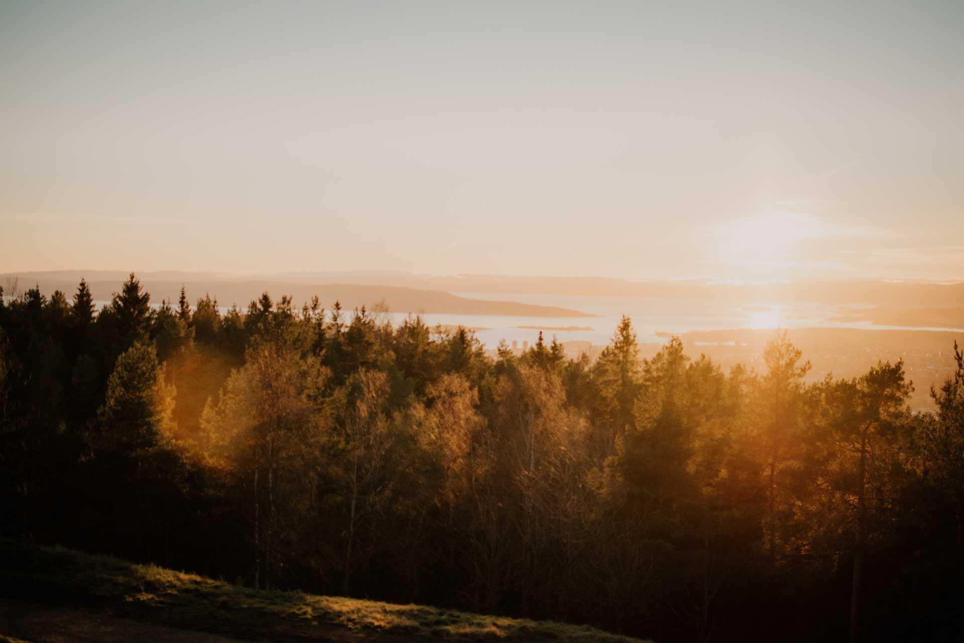 Oslo blog