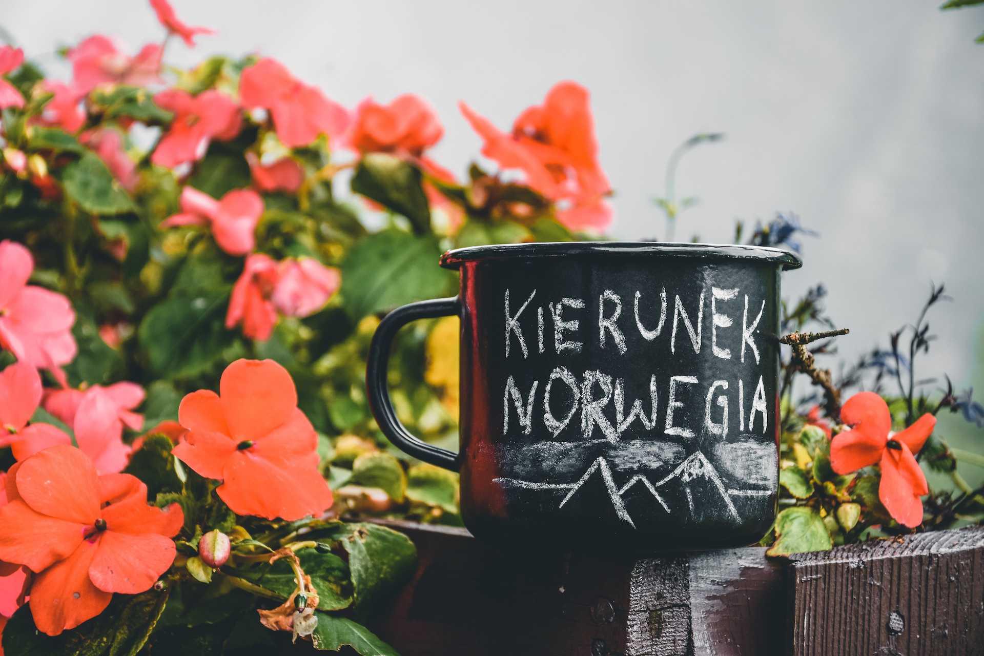 życie wNorwegii