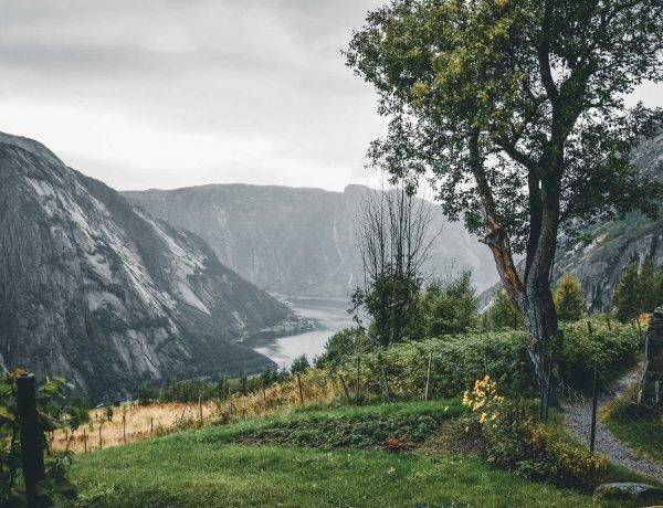 Blog o Norwegii