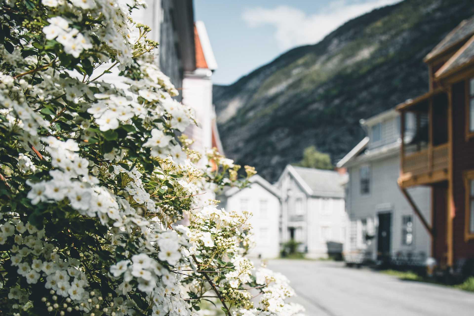 laerdal norwegia
