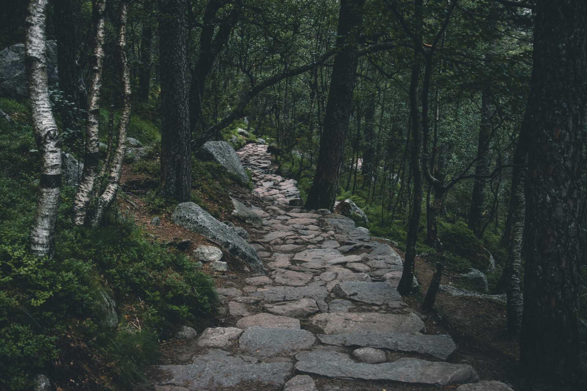 Pulpit Rock szlak