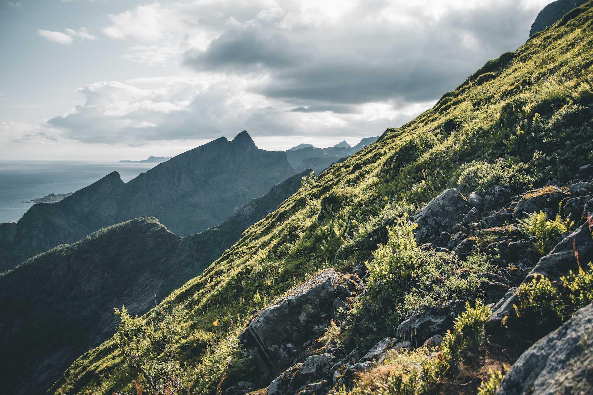 Norwegia blog