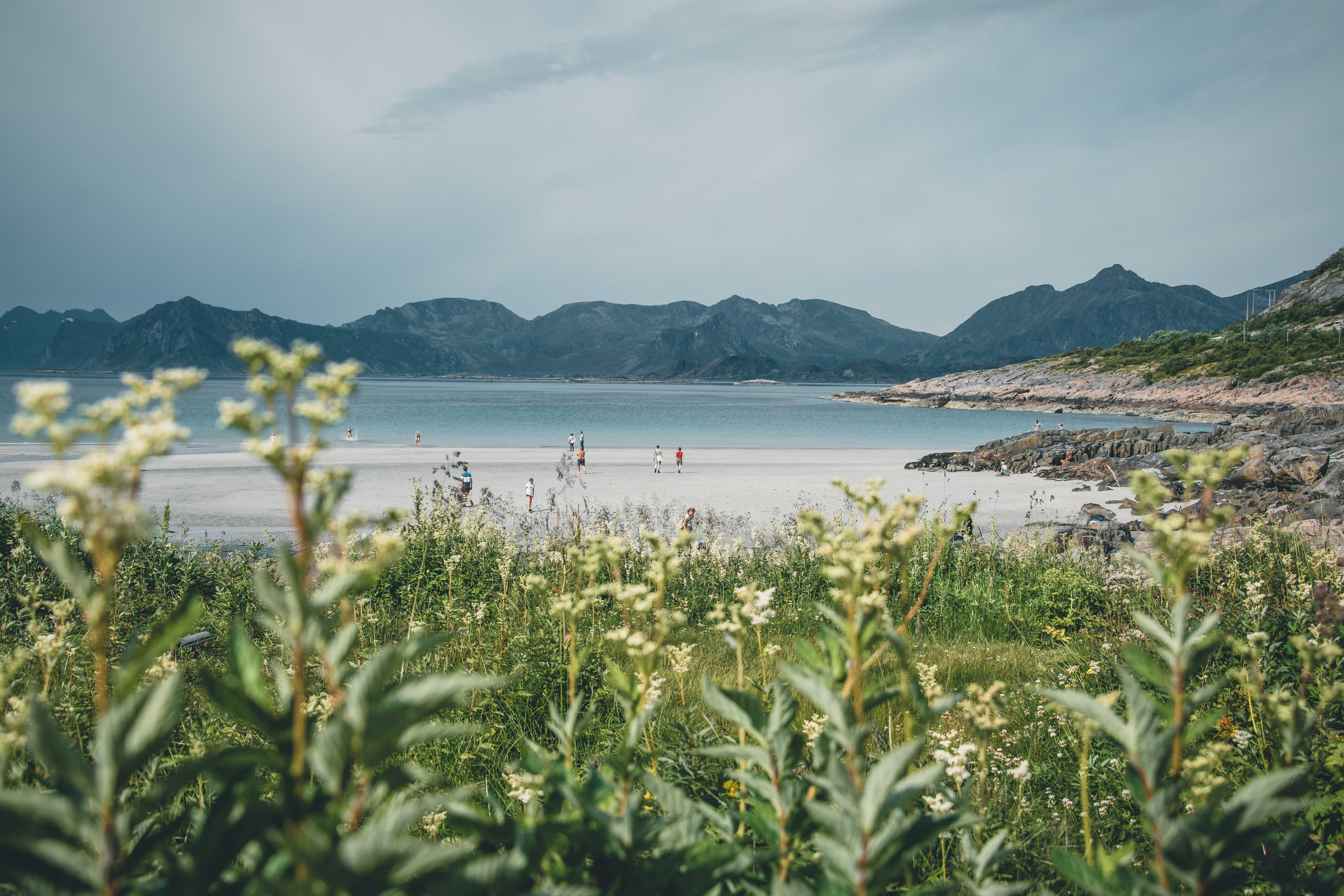 plaże naLofotach