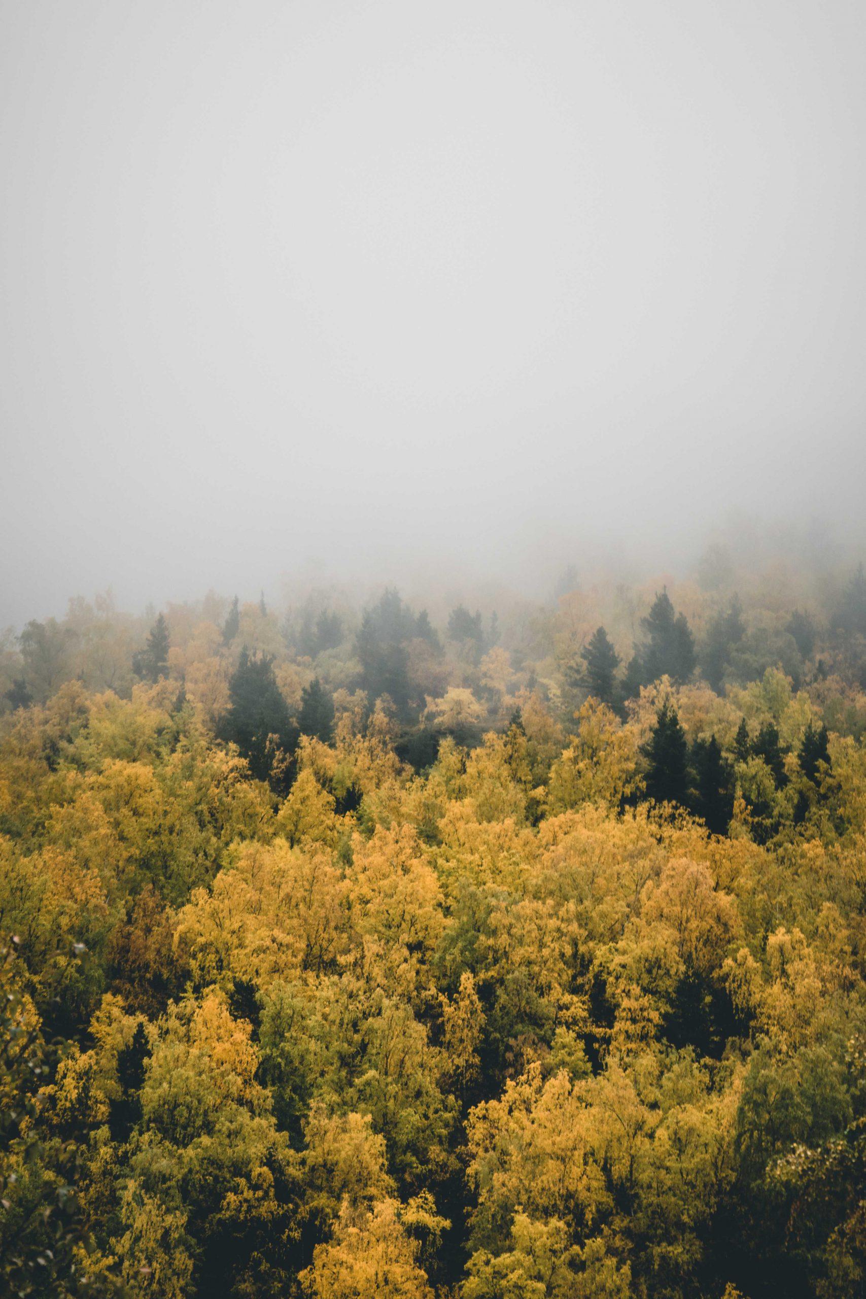 jaka jest jesień wNorwegii