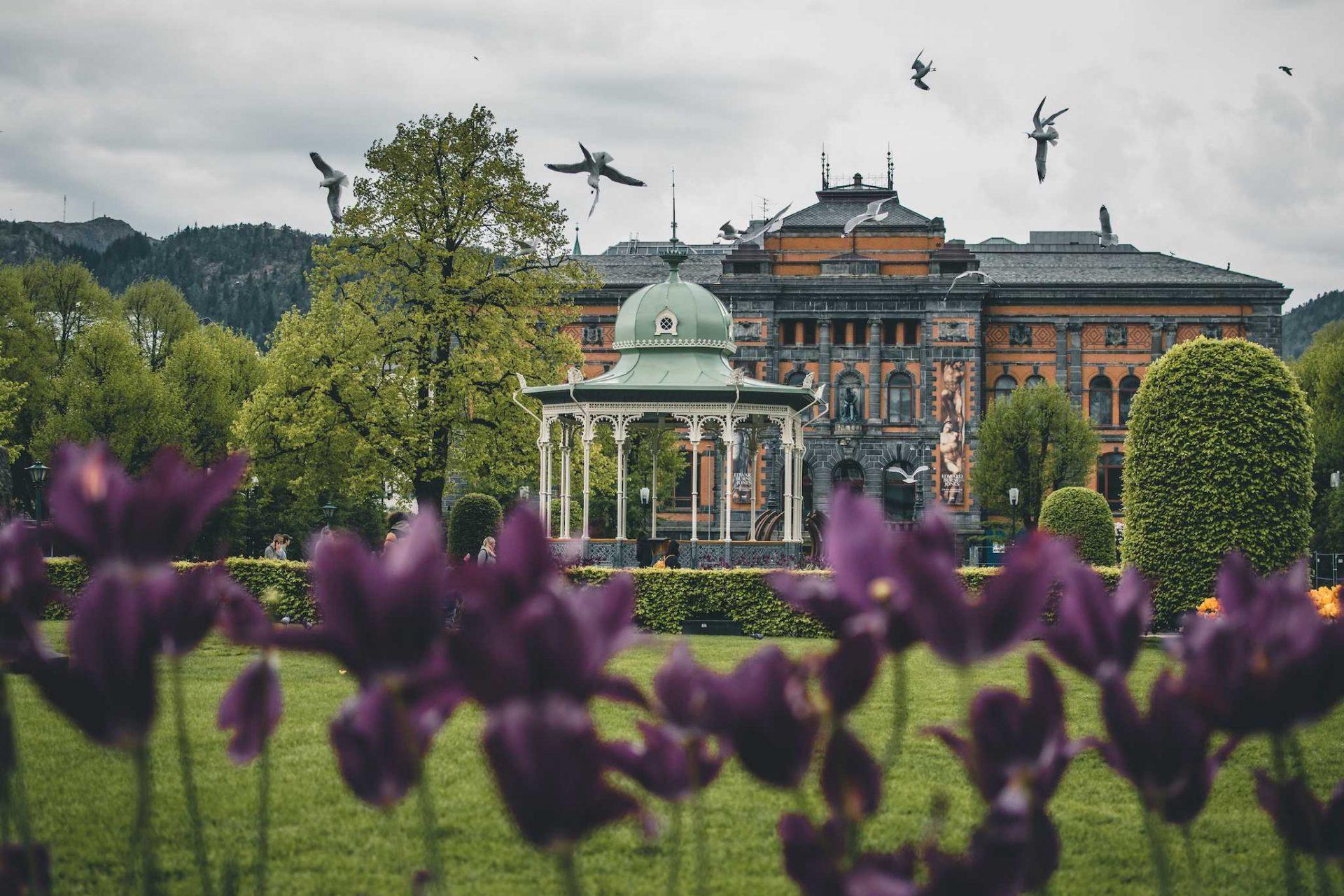park wBergen