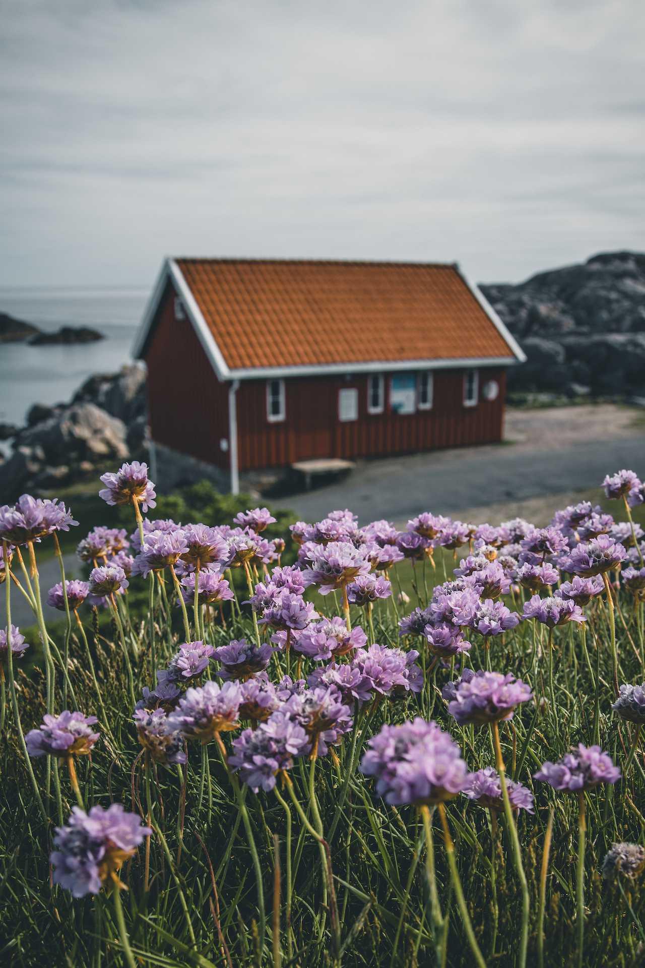 Norwegia Lindesnes
