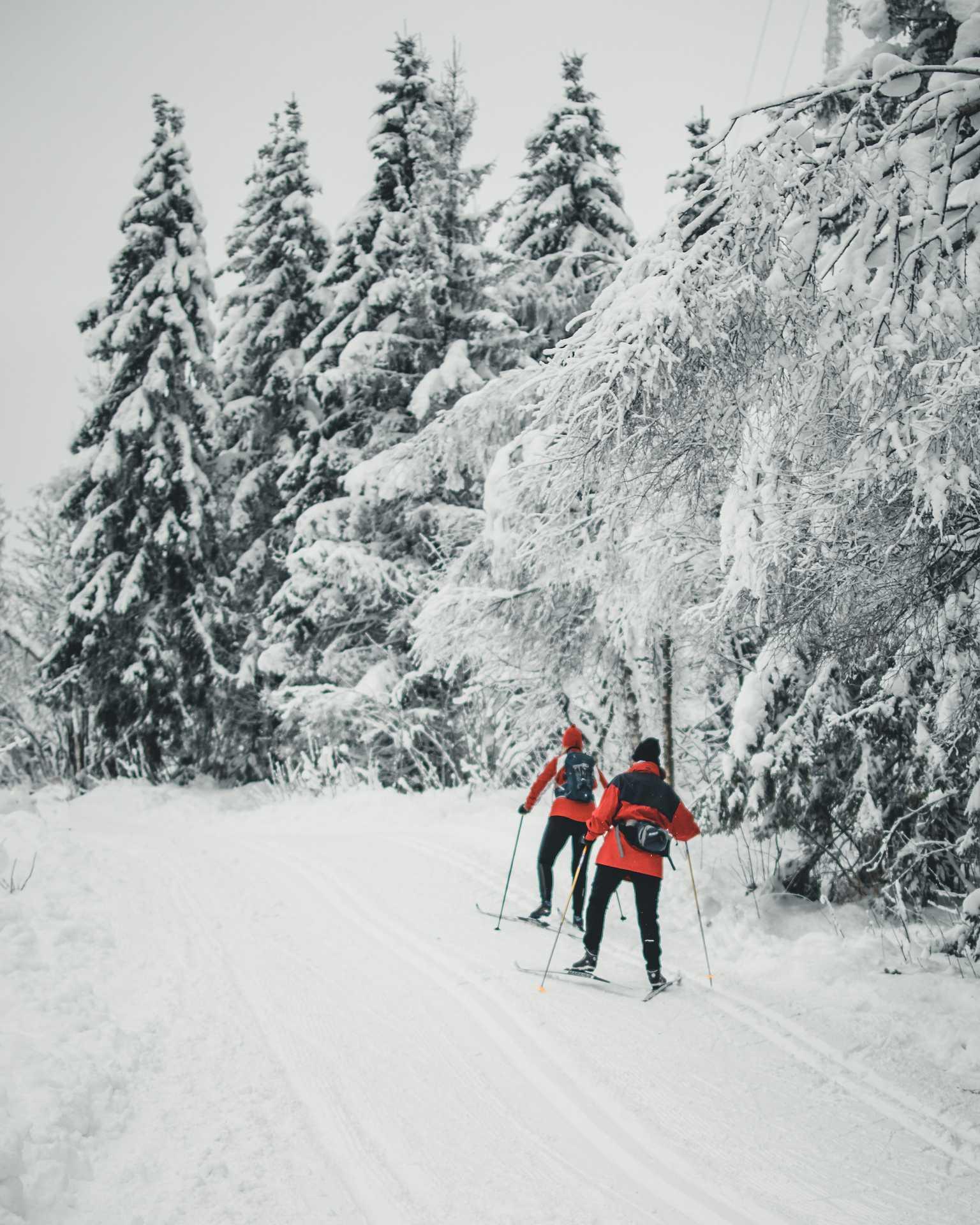 narty Oslo
