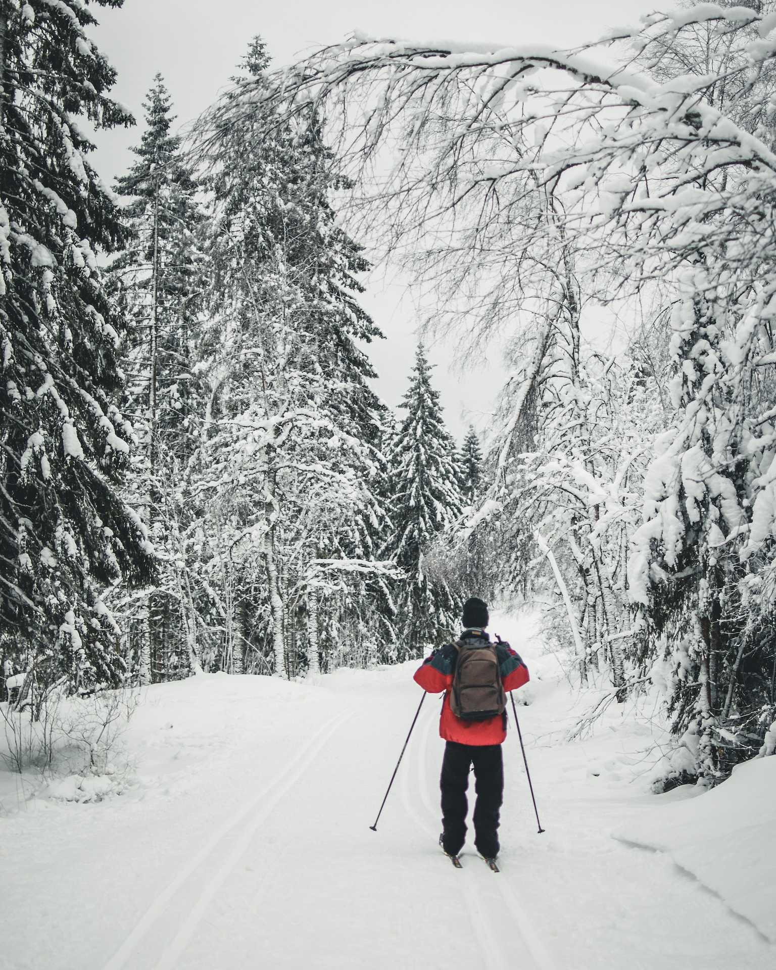 biegówki Oslo