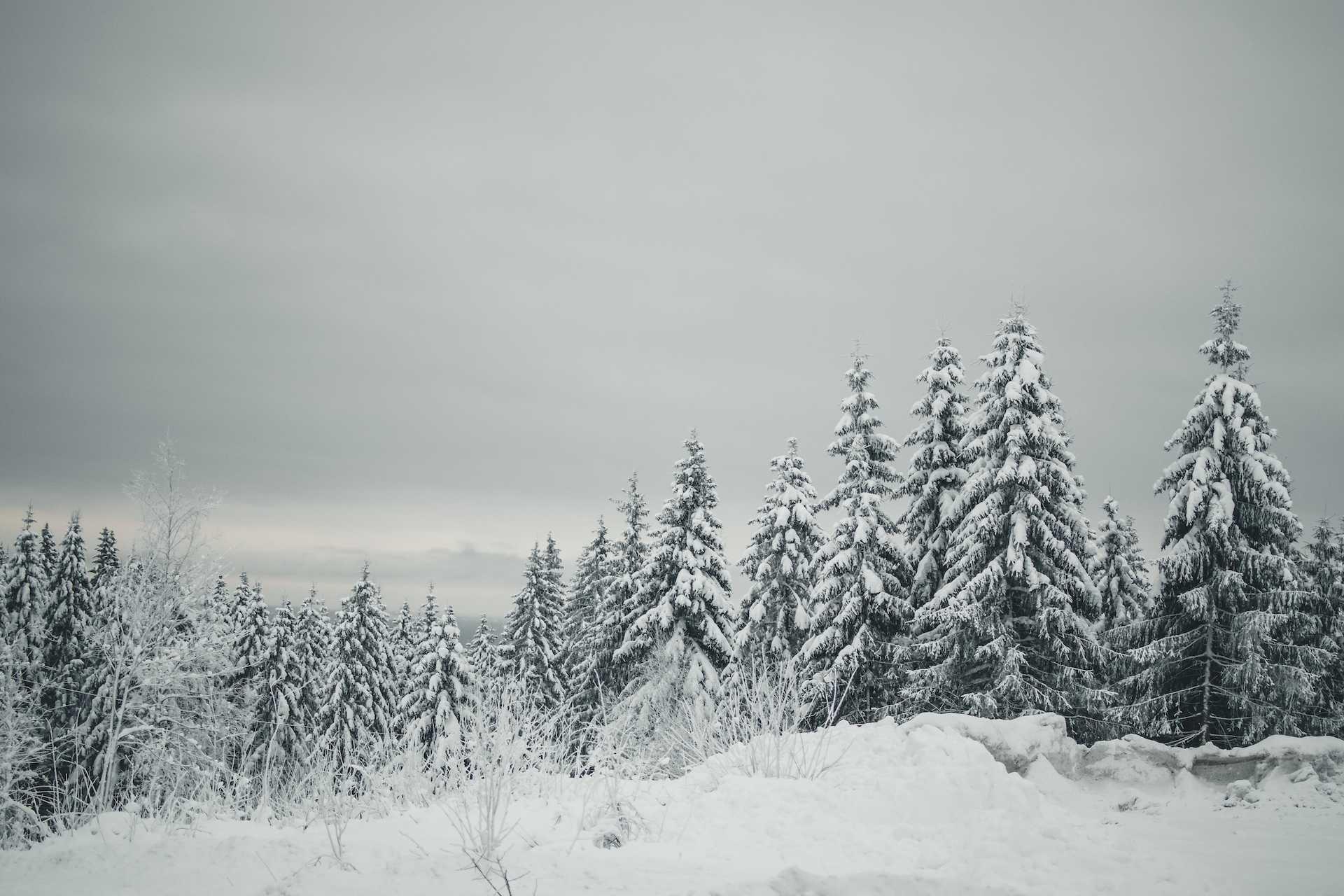 stolica Norwegii zima